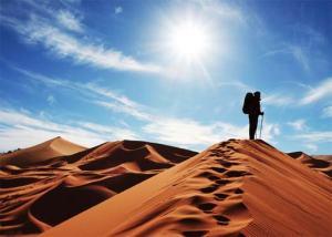 desert-survival